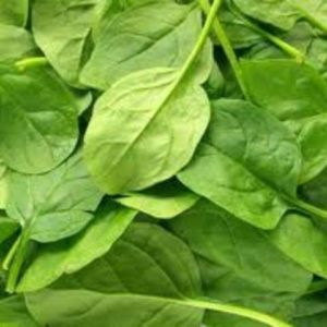 Salade pousse épinard