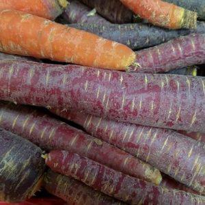 Carottes violettes