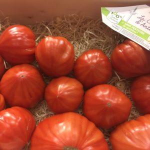 tomate coeur d antan