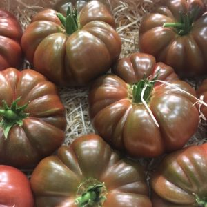 tomate noire crimée