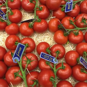 petites tomates grappe extra